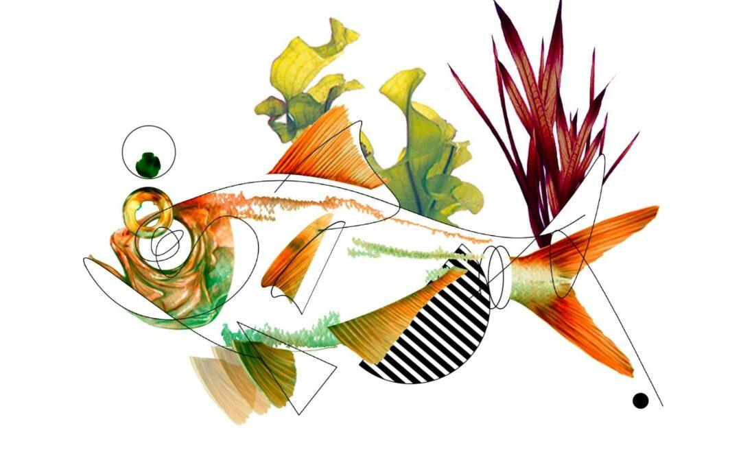 Nuevo éxito en la segunda edición de Fula Verde, gastronomía en movimiento, en el restaurante El Ancla (El Médano)